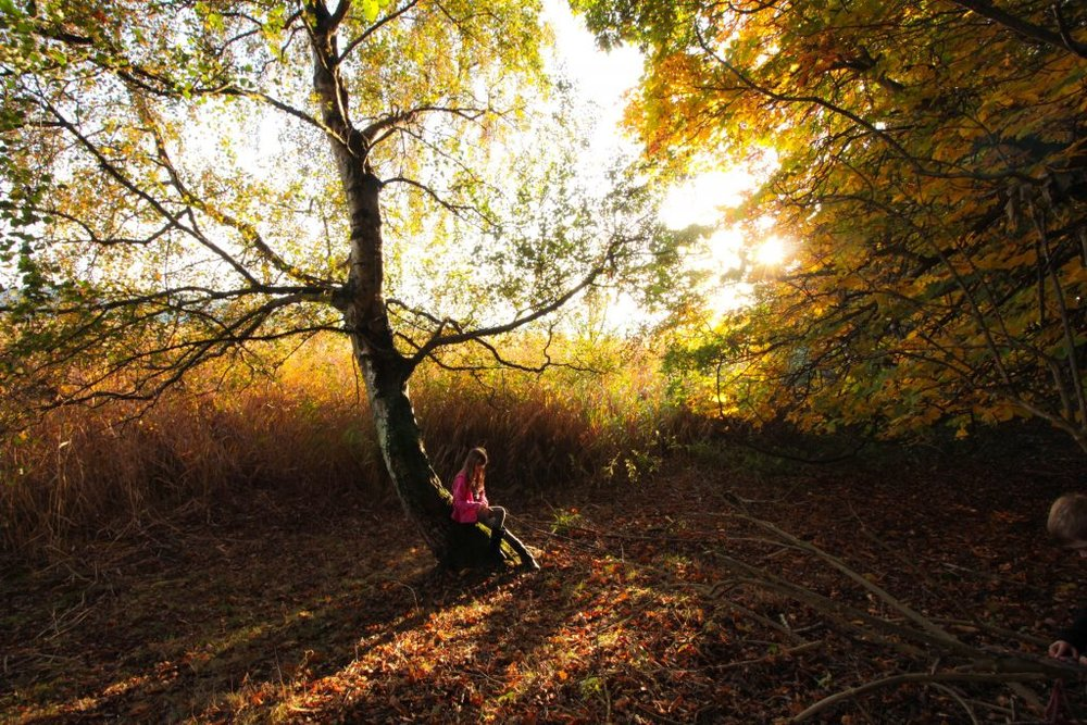 Ultimate Top 5 Autumn Locations - In Perthshire, Scotland