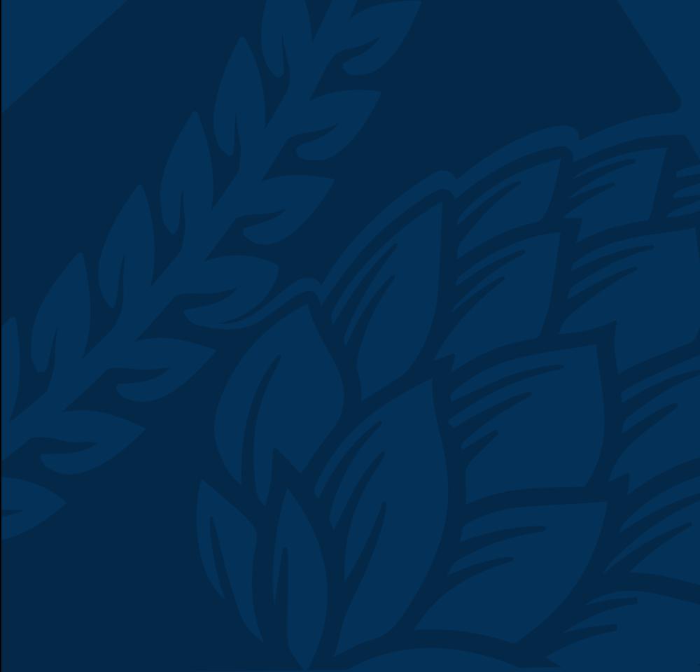Logo-Icon-BG-005.png