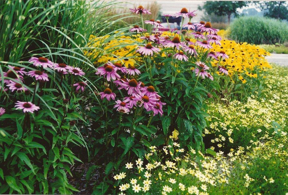 Landscape maintenance in East Peoria, IL