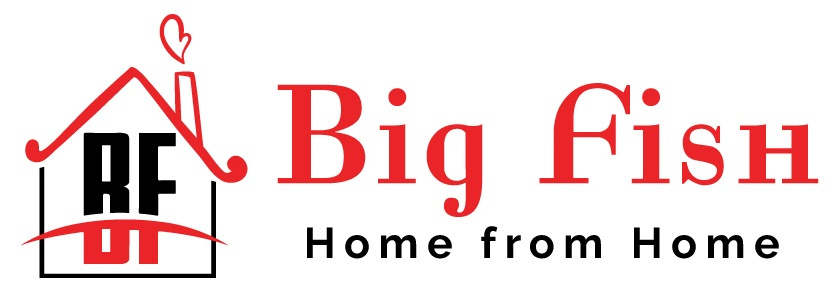 Big Fish Holiday Homes