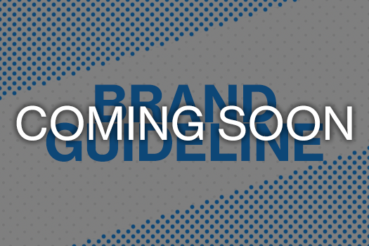 Brand Guideline Coming Soon.png