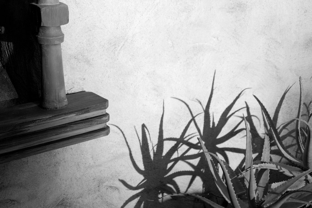 13.phc_US_ArchGard_sbdigs_color-2-9-13.jpg