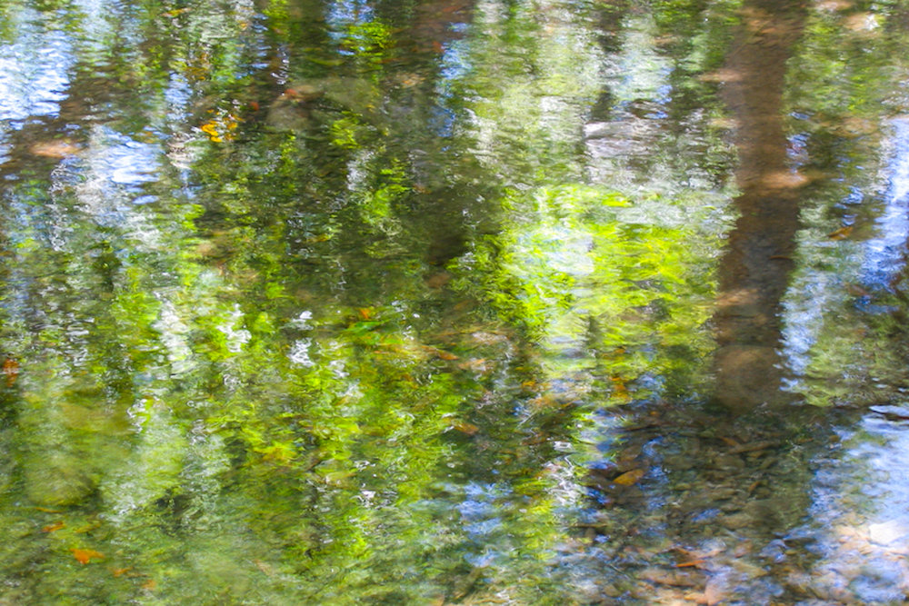 4.phc_US_ArchGard_sbdigs_color-4-8-4.jpg