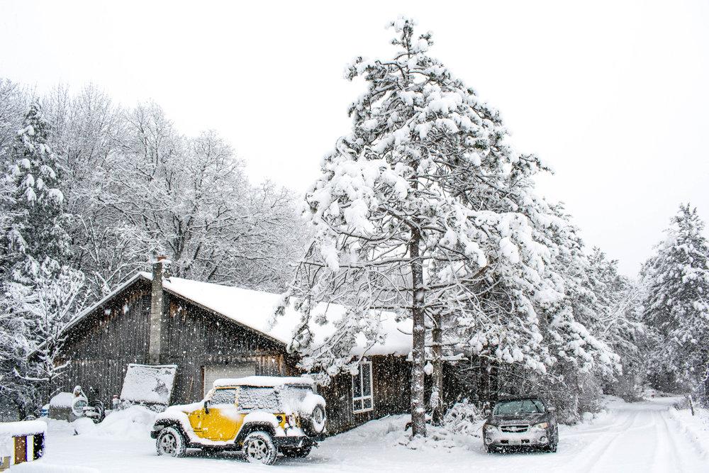 French Hill Heavy Snow Nov 2018 2.jpg
