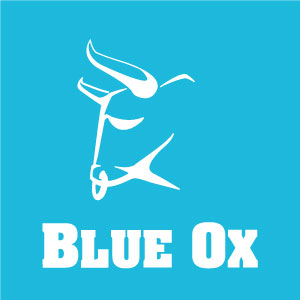Blue Ox Broomball
