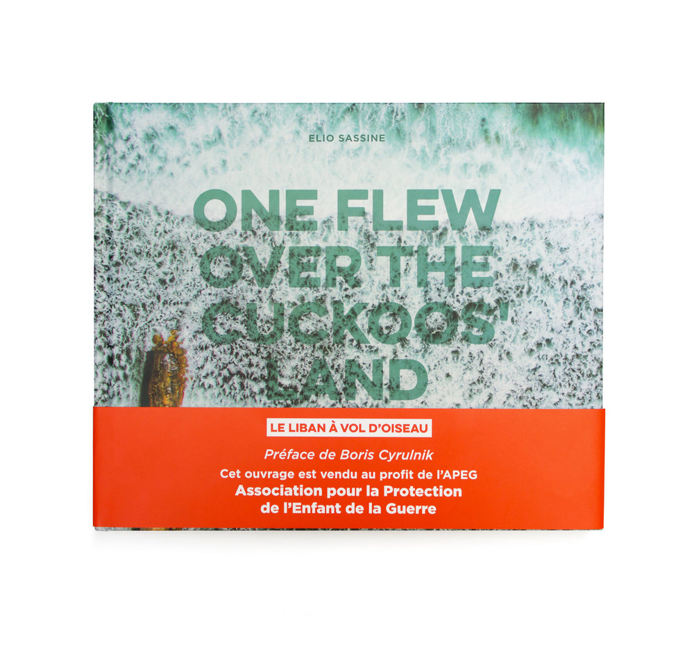 One flew over the Cuckoos' land