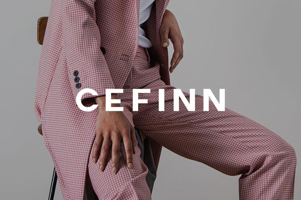 CEFINN.jpg