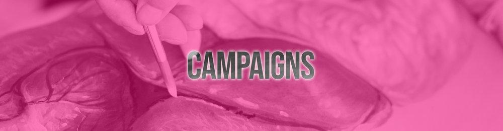 CW Campaigns.jpg