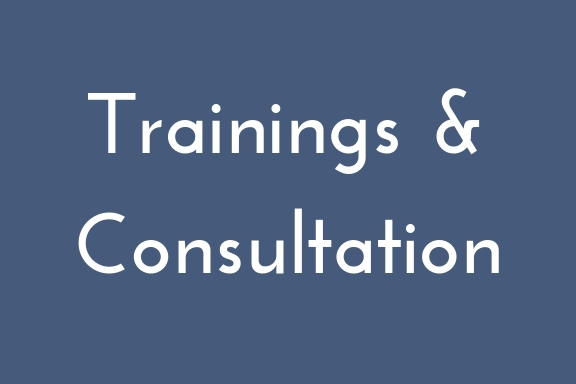 Customized training and consultation for state, territorial, and tribal coalitions and organizations, as well as for community service, holistic healing, and other such fields to reach programs that support survivors outside traditional sexual assault services. -