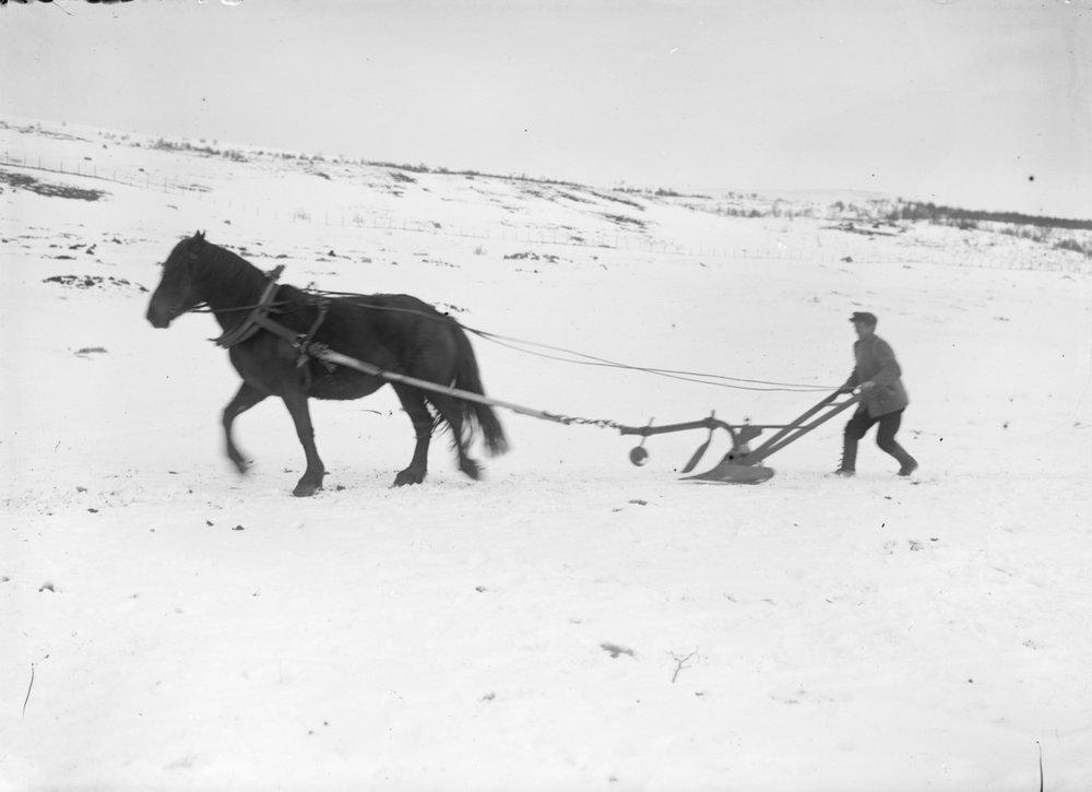 Johan Hjerkinn har her kjøpt seg ny plog, og måtte prøvekjøre denne på vinteren.