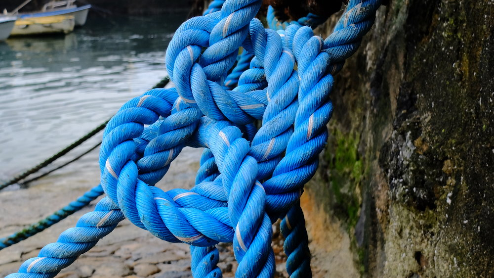 SEARCH & RECOVERY - Get a handle on the basic knots and search patterns.