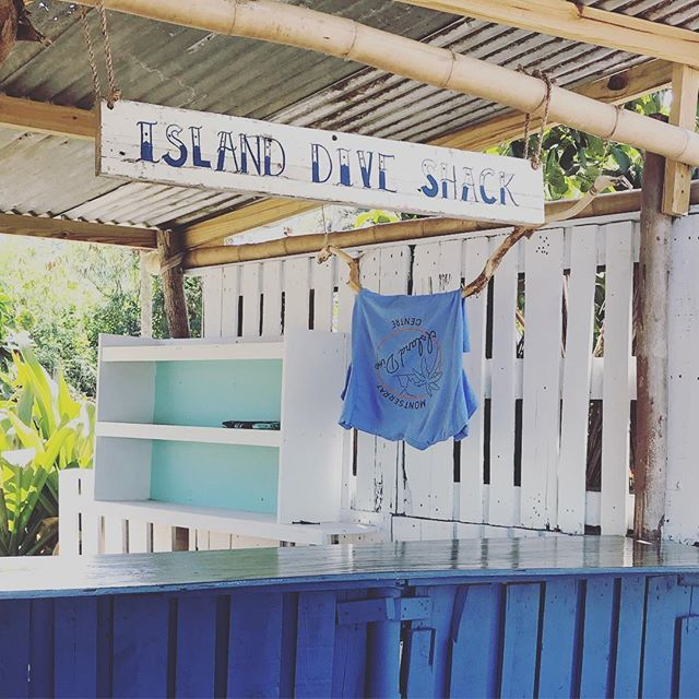 Oceanside pop up location is coming together! 🏝🌋🧜🏽‍♀️ . . . #scuba #picoftheday #adventurerediscovered #caribbean #diving #montserrat #westindies #staysalty #stpatricks