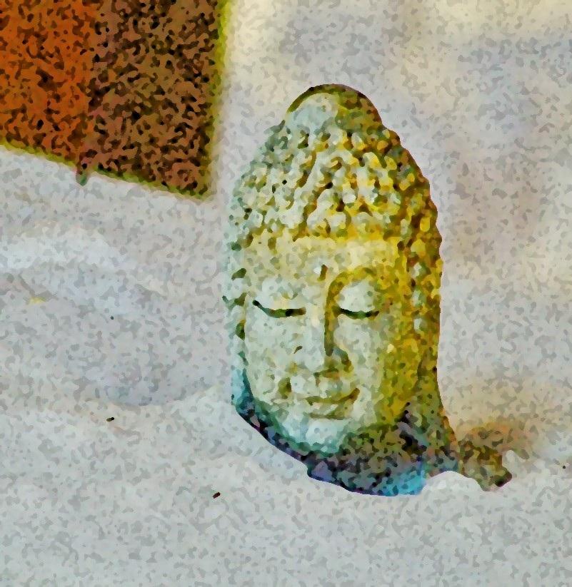 Yin+Yoga+.jpg
