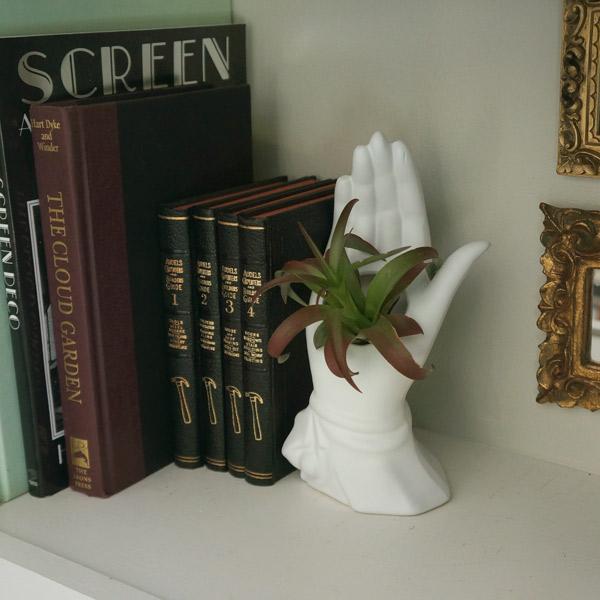 plant-hand-shelf-closeup.jpg