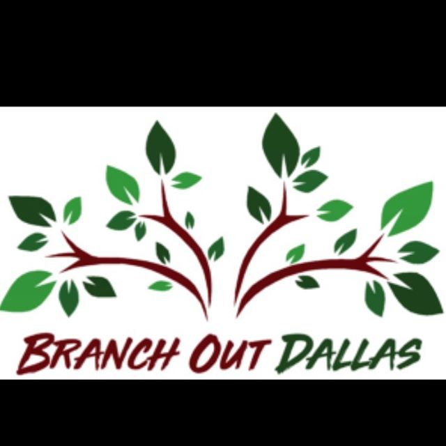 "Today is 'Branch Out Dallas' Tree Pick-Up Day,  Dallas residents interested in a tree but that did not register, may stop by one of the pick-up locations after 12pm to see if any trees remain. FREE Trees !! 🌳🌲🌳🌲 ""This program is limited to Dallas residents and a Dallas Water Utility bill or government-issued ID is required at pick-up"" #DallasBranchOut #GreenDallas #trinityblacklands #urbanforestry #arborist  https://www.google.com/amp/s/patch.com/texas/dallas-ftworth/amp/27957830/branch-out-dallas-tree-pick-day-locations"