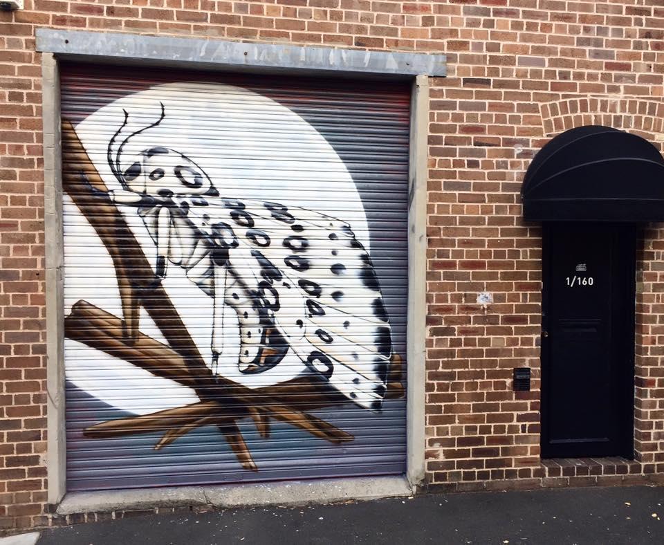 Roller door for The Commune, Newtown