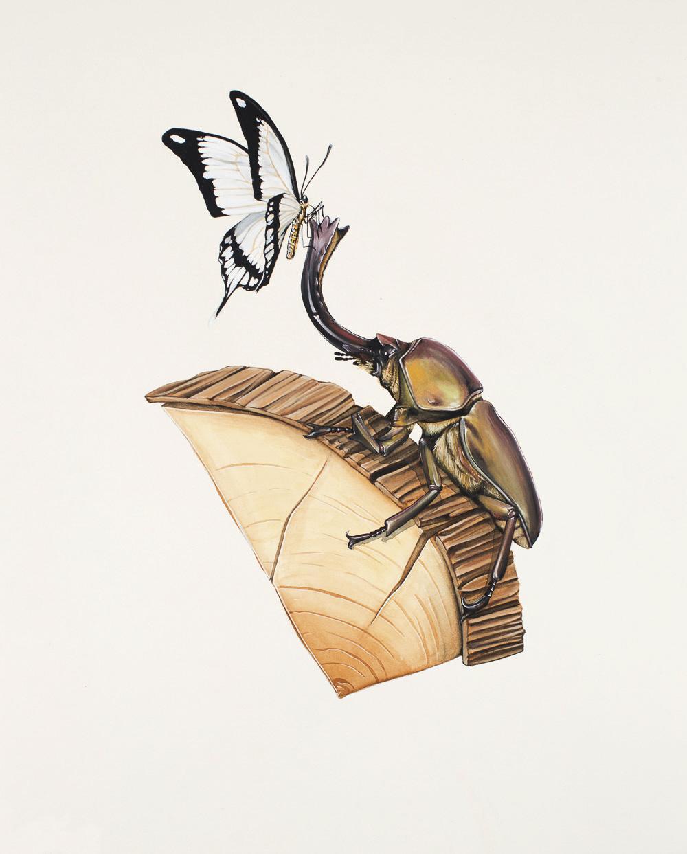 'Antler Beetle on Wood 2'