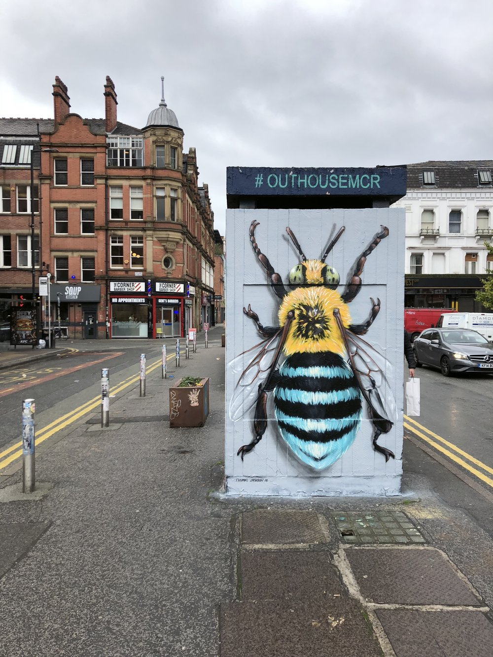 Blue Banded Bee, Manchester