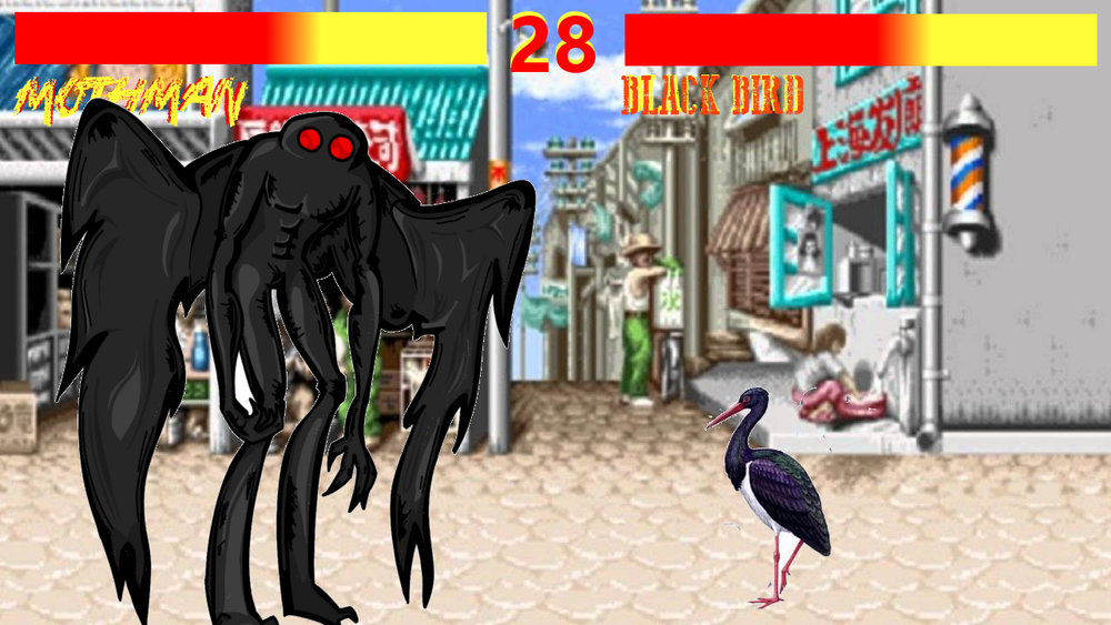 The Black Bird of Chernobyl vs. Black Stork.jpg