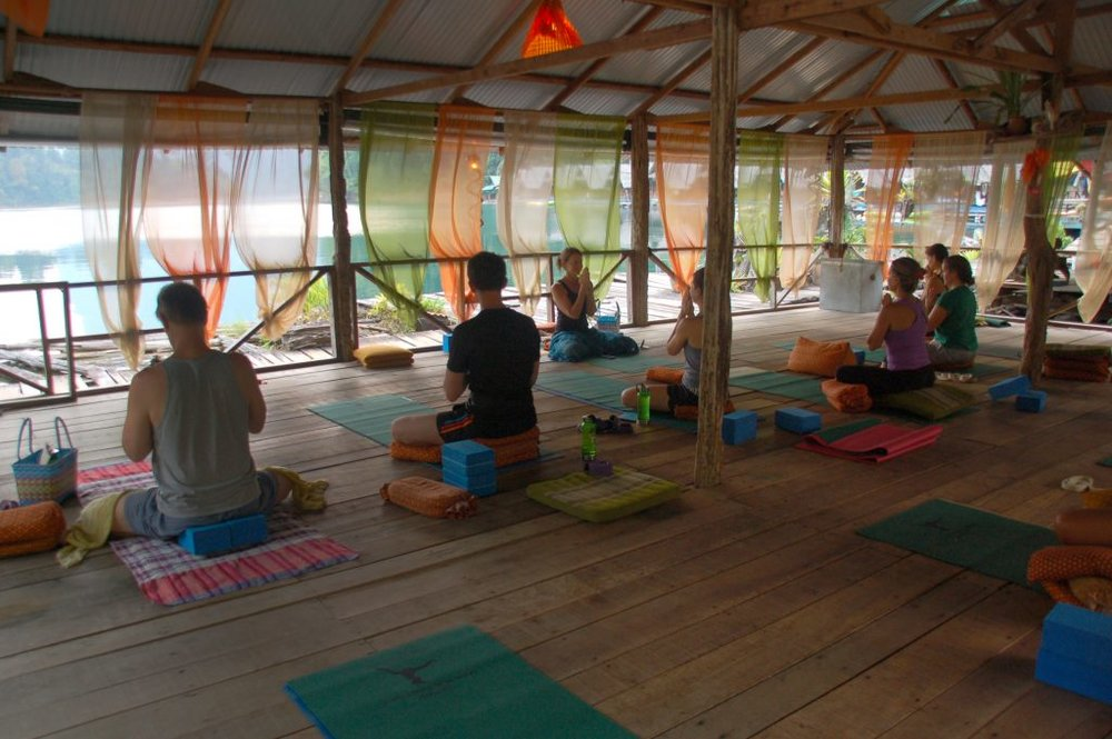 Kim-at-Jungle-Yoga-Teaching-1024x681.jpg