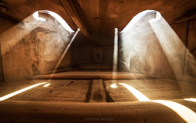 photos-inside-a-cello-3.jpg