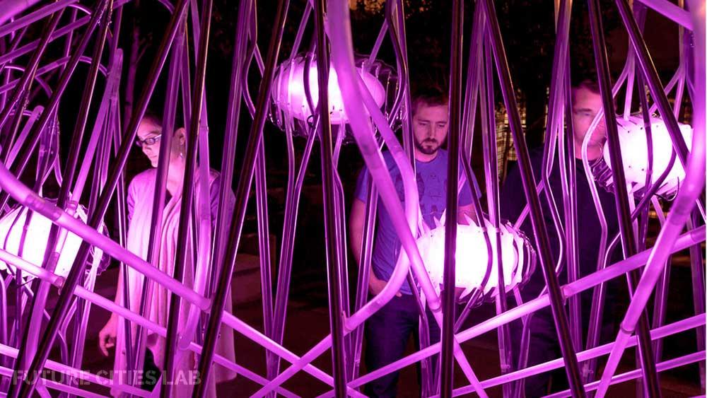 Datagrove installation. Photo:Peter Prato –   www.peterprato.com