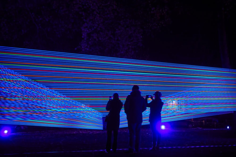Horizontal Interference comprises colourful cords wrapped around trees Photo:   The Guardian