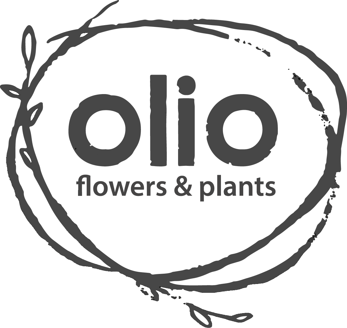 Olio flowers + plants