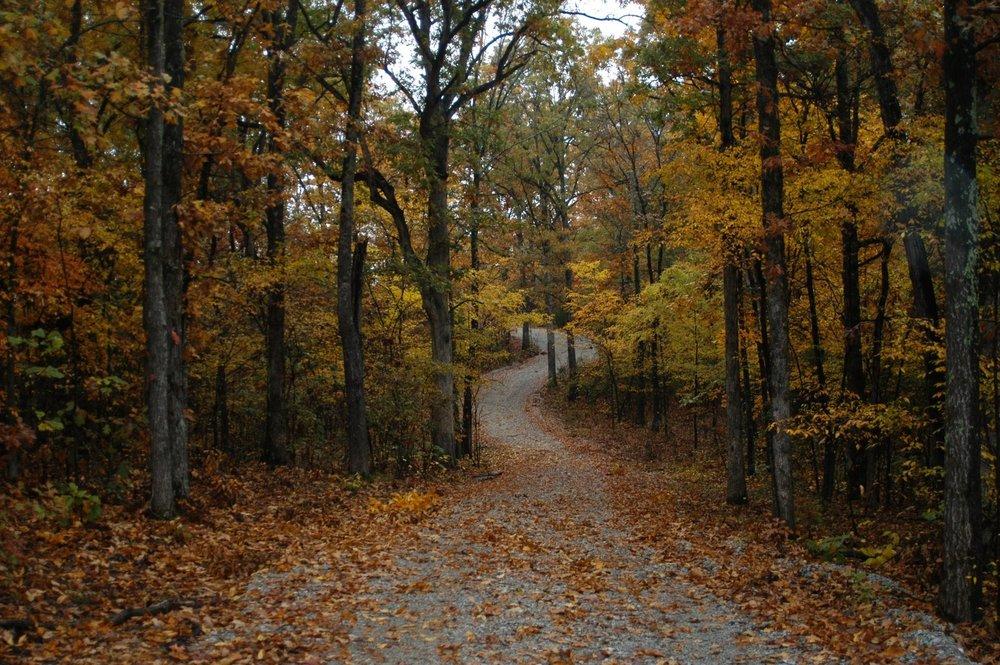 A beautiful fall day at King's Ranch