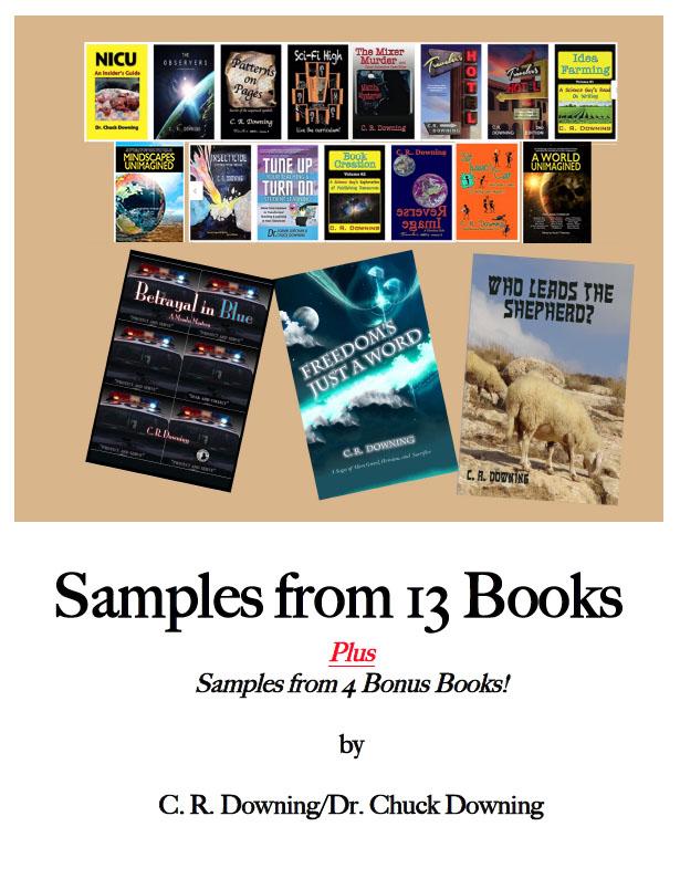sample book poster.jpg