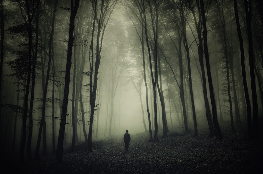 """In the middle of the journey… - …I came to myself in a dark wood where the direct way was lost."" —Dante"