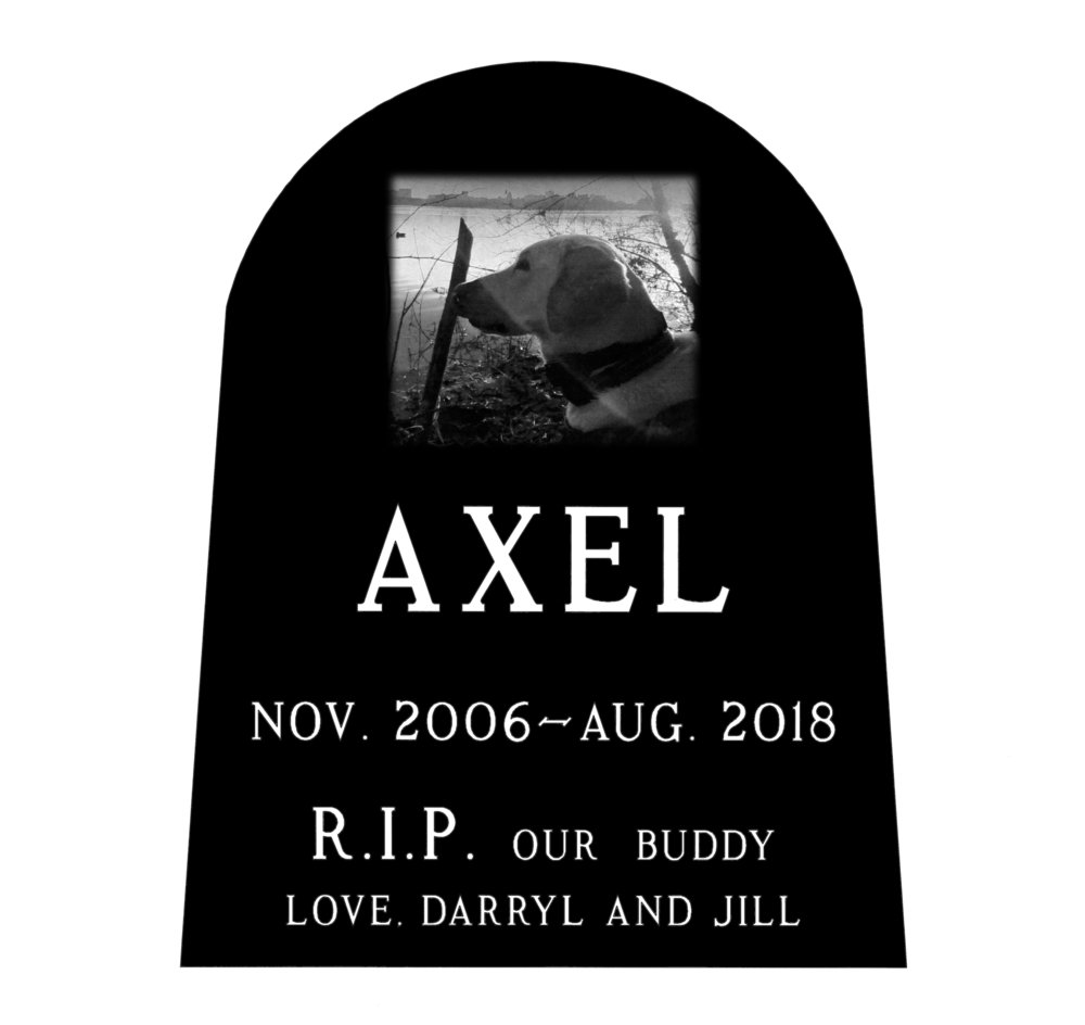 Axel_layout.jpg