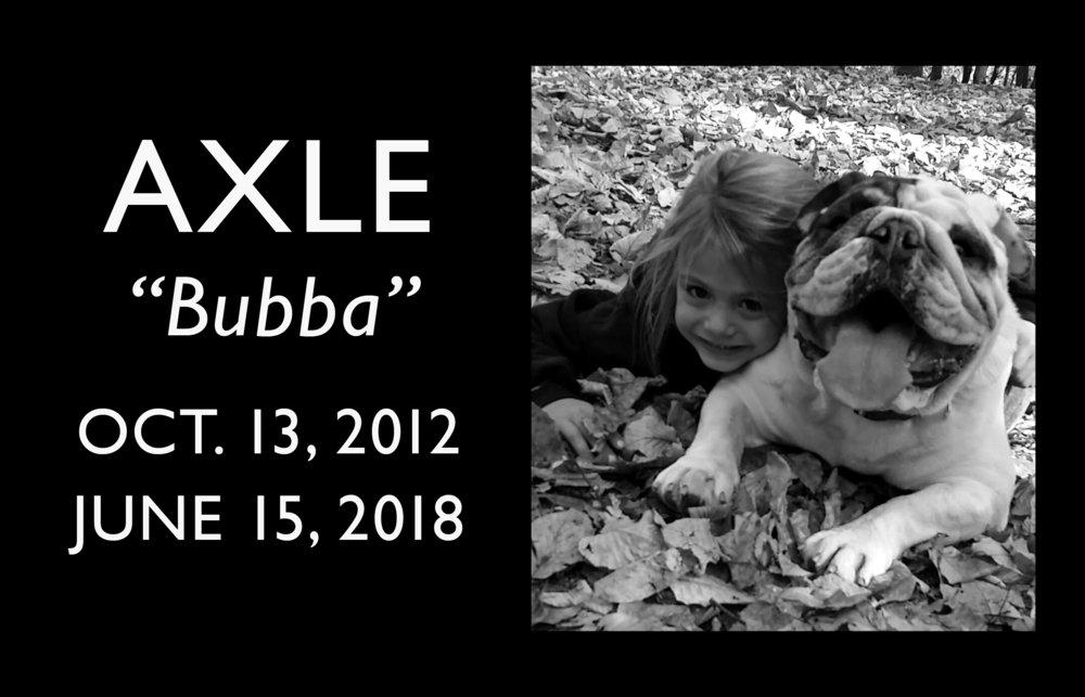 Axle Bubba_layout.jpg