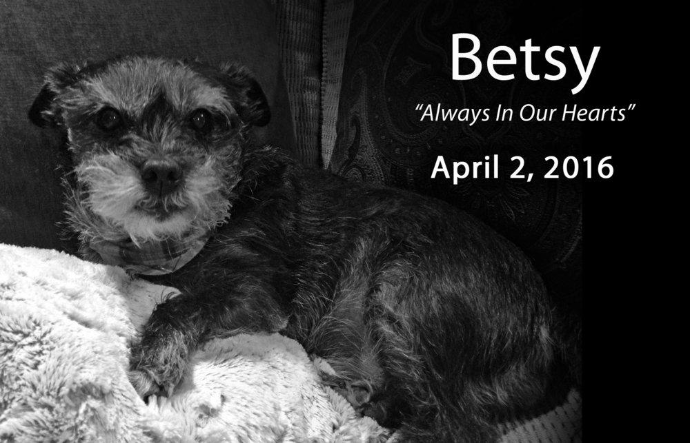 Betsy_layout.jpg