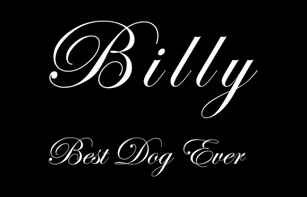 Billy_layout.jpg
