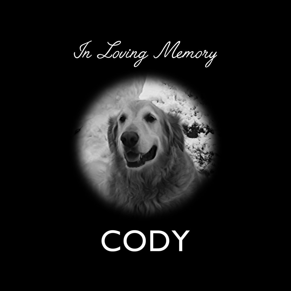 Cody_layout.jpg