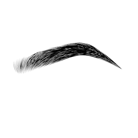 3D Hairstrokes.png