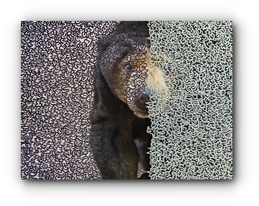 digital-art-bear-mind-artist-duo-ingress-vortices.jpg