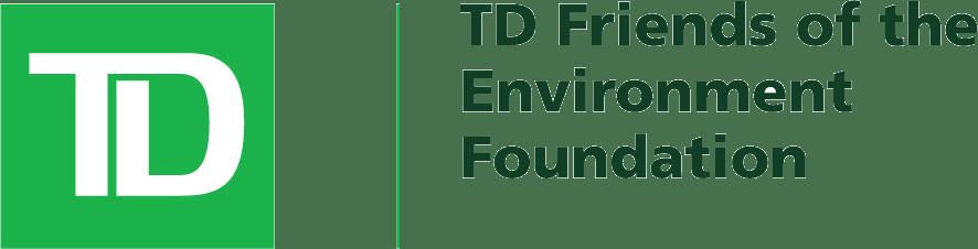TD-FEF-logo.png