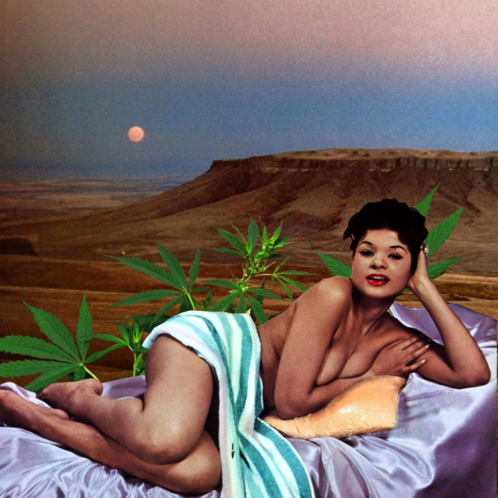 Savina Monet is adding her feminine touch to the male-dominated Cannabis industry. - And it's no wonder why her designs stand out. They add color, surrealism, and an artistic flare to an otherwise bland-faced trade.