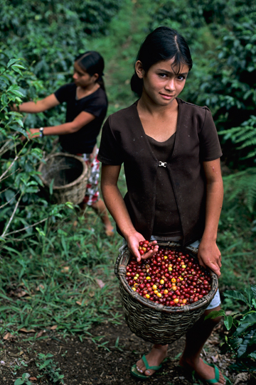 Lavazza-¡Tierra-Honduras_4lowres2.jpg