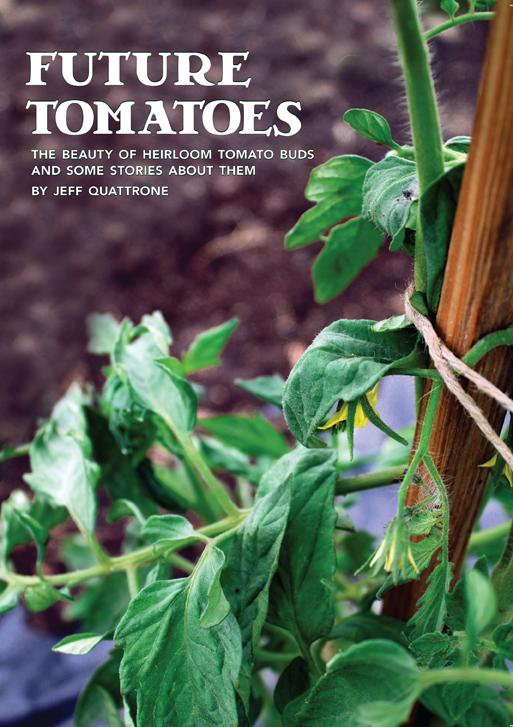 Cover photo Future Tomatoes