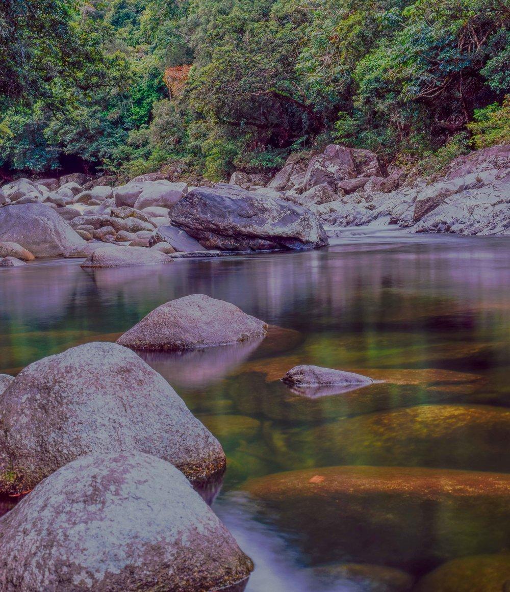 Mossman Gorge Nth QLD 3.jpg