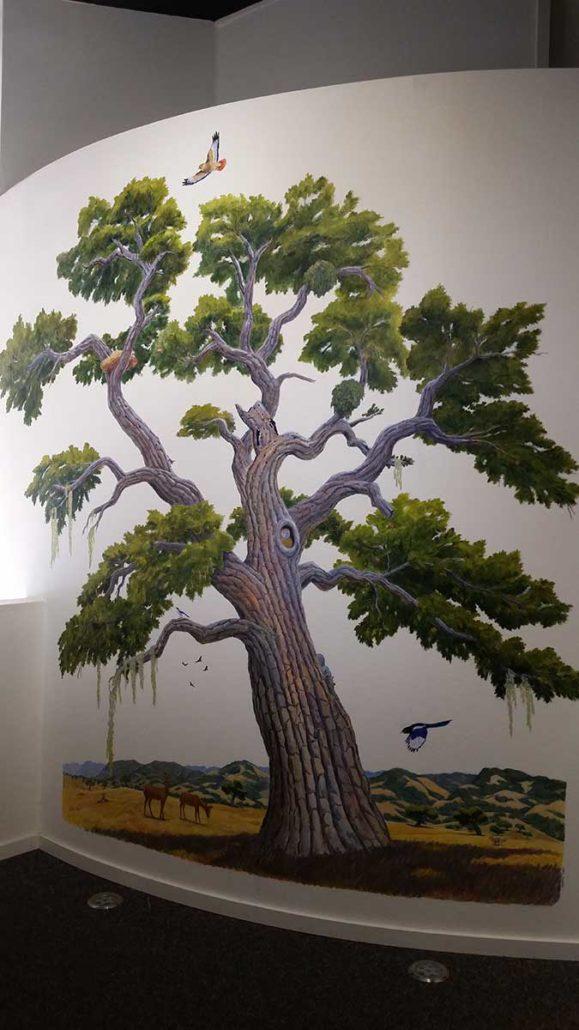 Valley Oak Gallery, Wildling Museum