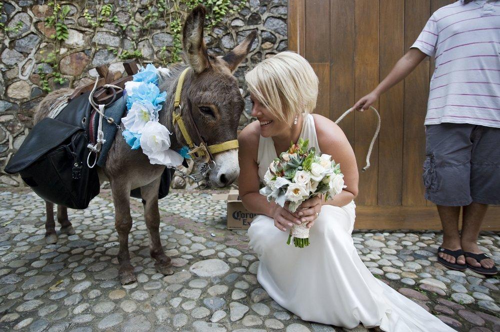 julie-nick-wedding-photos-30.jpg