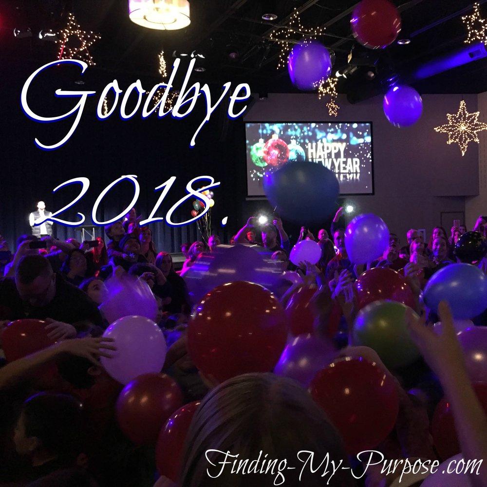 goodbye2018z.jpg
