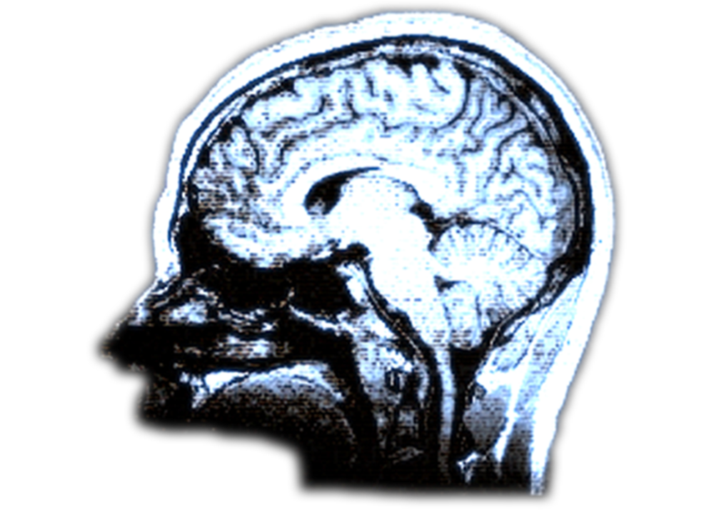 Action Potential logo - brain.png