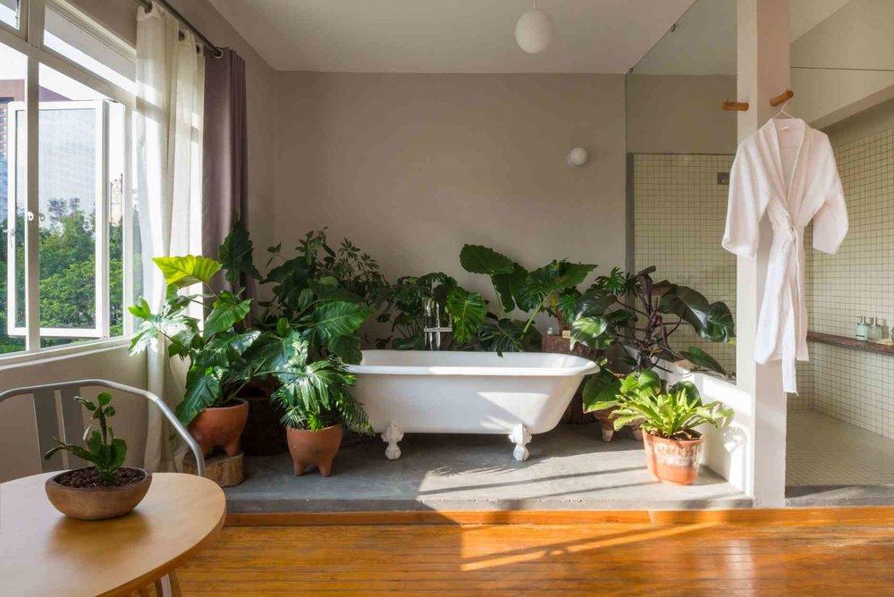 Chaya-Bath.jpg