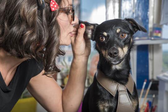 mansion-dog-gossip.jpg