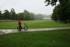 bike-252826-340.jpg